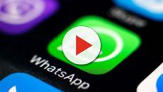 Finto operatore Vodafone ruba dati personali su WhatsApp