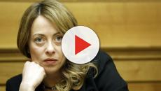 Giorgia Meloni contro Gianfranco Librandi: