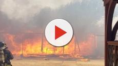 Catania, incendio arriva fin sulla spiaggia: bagnanti si rifugiano in mare