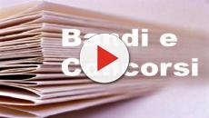 Concorsi, pubblicati bandi per psicologi, educatori, dirigenti e socio-assistenziali