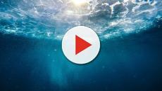 El agua de mar llega a las farmacias de España gracias a EBBE y SEA4