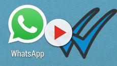 Whatsapp permitirá este año activar el 'modo vacaciones' y otras novedades