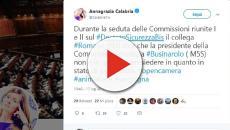 Decreto Sicurezza Bis: Romano avrebbe invitato la presidente a dimettersi perché incinta