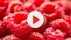 Beneficios para la salud que nos ofrecen las frambuesas