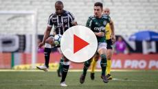 Palmeiras deverá ter time misto para encarar o Ceará