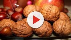Un estudio certifica que los frutos secos pueden mejorar la vida sexual