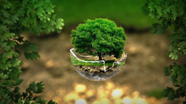 Ambiente: oggi, 29 luglio, cade l''Earth Overshoot Day', risorse naturali già finite
