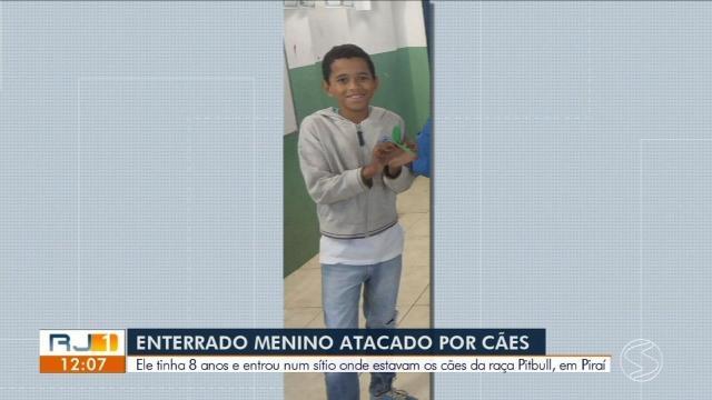 Criança de 8 anos morre após ser atacada por pitbulls em Piraí