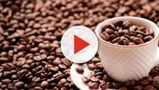 Beber tres tazas de café diarias podría ser el causante de sufrir misgrañas periódicas