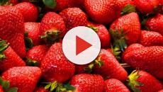 Cinco beneficios que ofrecen las fresas para la salud