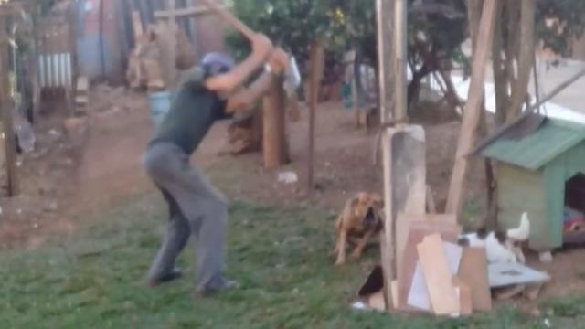 Idoso é condenado a pagar multa de R$ 3 mil ao agredir cachorro com uma foice