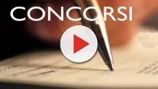 Concorsi Cnr e Iss: domande da presentarsi online, scadenza il 12 settembre