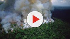 Jair Bolsonaro insinúa que las ONG pueden estar detrás del os incendios en el Amazonas