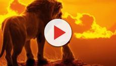 Il Re Leone, il remake del titolo Walt Disney esaltazione della Savana