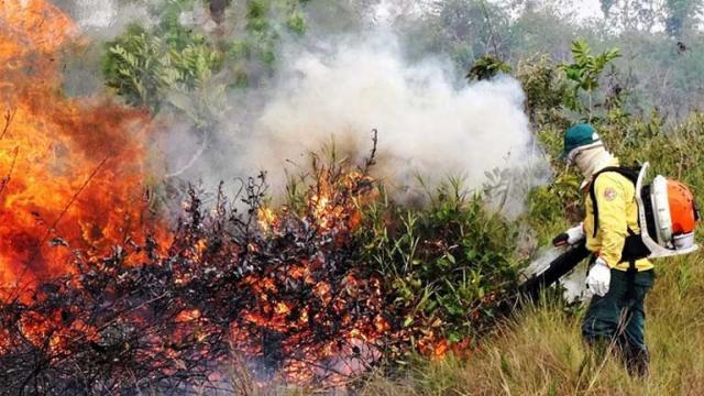 Amazon fires: Merkel and Macron urge G7 to debate 'emergency'