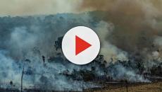 Numerose protesta dal G7 contro Bolsonaro e l'emergenza incendi in Amazzonia