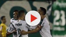 Palmeiras e Fluminense fazem jogo atrasado da 16ª rodada do Brasileirão