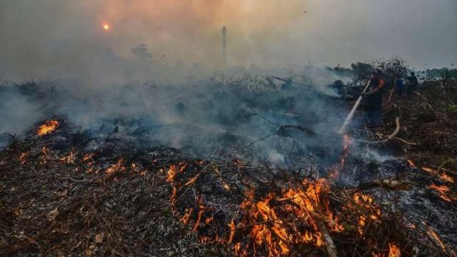 Indonesia forest fire: Malaysia and Singapore choking on the fumes