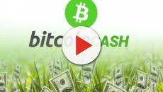 Rober Ver è pronto a lanciare Bitocin Cash, uno strumento finanziario per speculare