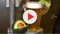 La cerveza de aguacate es la nueva bebida que conquistó a Estados Unidos