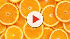 Cinco alimentos que ayudan a mejorar la salud de la piel