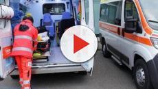 Calabria, un uomo perde il controllo della sua auto, si schianta contro un uliveto e muore