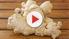 Cinco termogénicos naturales que aceleran la quema de grasa