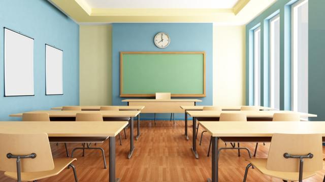 A novembre il nuovo governo presenterà il bando per l'assunzione di 24mila precari scuola