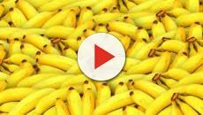 Thé, banane et chocolat sont voués à disparaître
