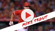 Cardinals fan gets roasted after claiming Molina is better than Trout