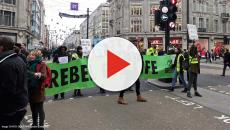 280 Extinction Rebellion protesters arrested in central London