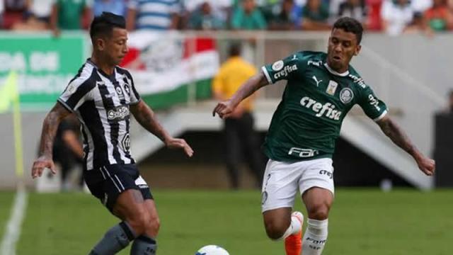 Palmeiras x Botafogo: transmissão ao vivo, possíveis escalações e arbitragem