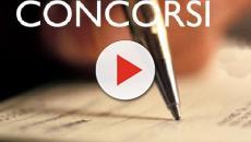 Concorso per geometra, architetto e ingegnere: le candidature da inviare entro novembre