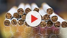 Philip Morris e Coldiretti, nuovo accordo che potrebbe durare fino al 2024