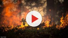 Wildfire: Thousands evacuated from areas in northern California
