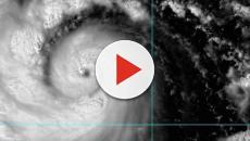 Si aggrava il bilancio del tifone Hagibis che ha colpito il Giappone: almeno 24 morti