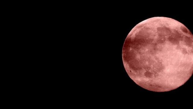Nella notte del 13 ottobre sarà possibile osservare la 'Luna piena del cacciatore'