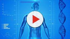 1,500 ricercatori uniti per la creazione dell'atlante per ritrarre un organismo umano sano