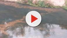 Manequim jogado em rio é confundido com cadáver e mobiliza Corpo de Bombeiros
