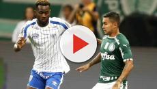 Avaí x Palmeiras: onde ver ao vivo, arbitragem e escalações