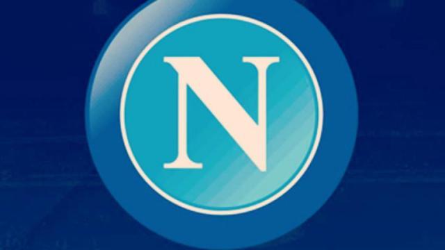 Napoli-Atalanta: interrogazione parlamentare dopo il rigore non dato a Llorente