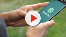 Da adesso è possibile accedere a WhatsApp utilizzando lo sblocco con l'impronta digitale