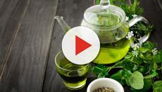 Ervas, plantas medicinais e frutas ajudam a prevenir doenças e equilibrar o metabolismo