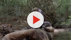 The Walking Dead 10, spoiler 7° puntata: l'acqua avrebbe causato l'epidemia ad Alexandria