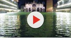 Acqua alta a Venezia, livello record a 187 centimetri: si contano anche due vittime