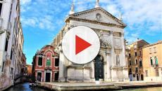 Vienna museum turns road kill into art