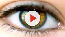Degenerazione ereditaria della retina: lo zafferanno può rallentarla o bloccarla