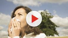 Segurar o espirro pode acarretar em riscos para a pessoa