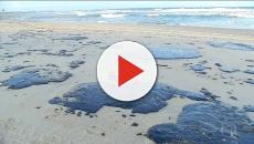 Óleo das praias do Nordeste chega ao Rio de Janeiro