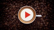 Benefícios do café para a saúde dependem da quantidade consumida